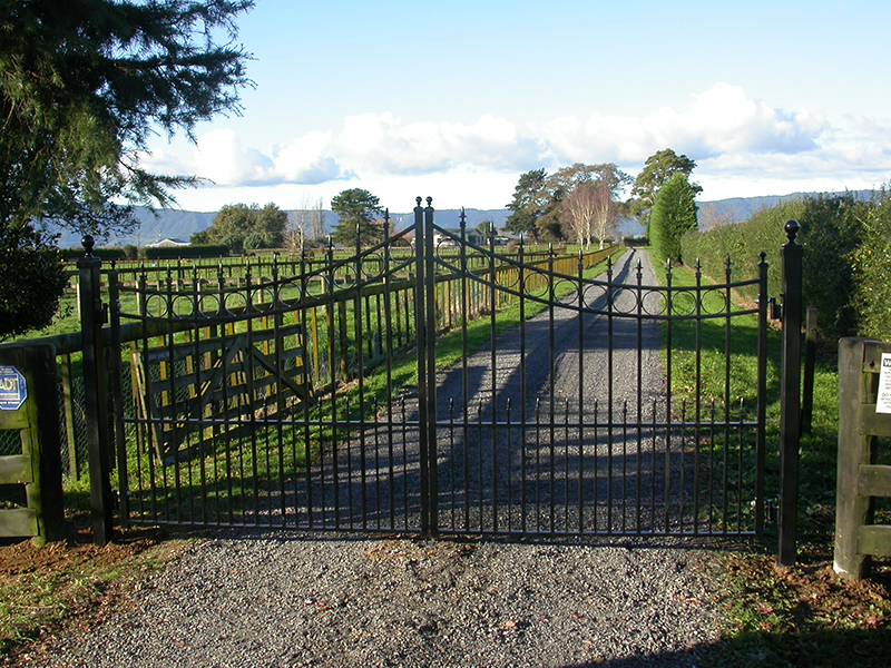 Inverted top double gates with spears and circle inserts